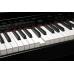 Roland DP-90SE-PE цифровое пианино