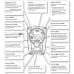 Roland TD-15K электронная ударная установка